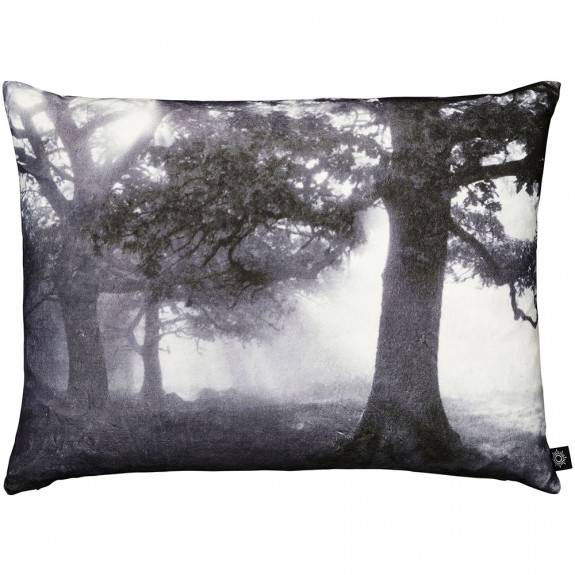 By Nord Forest In Mist Cushion